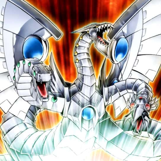 """The Organization 